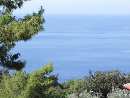 500M2 Grundstück Mit Meerblick Zum Verkauf In Faralya Land Verkauf