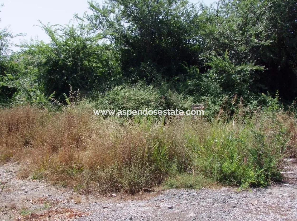 Gurpinar In Dalyan For Sale Dalyan Land For Sale, Plot For Sale In Köşebaşı 993M2 0 60