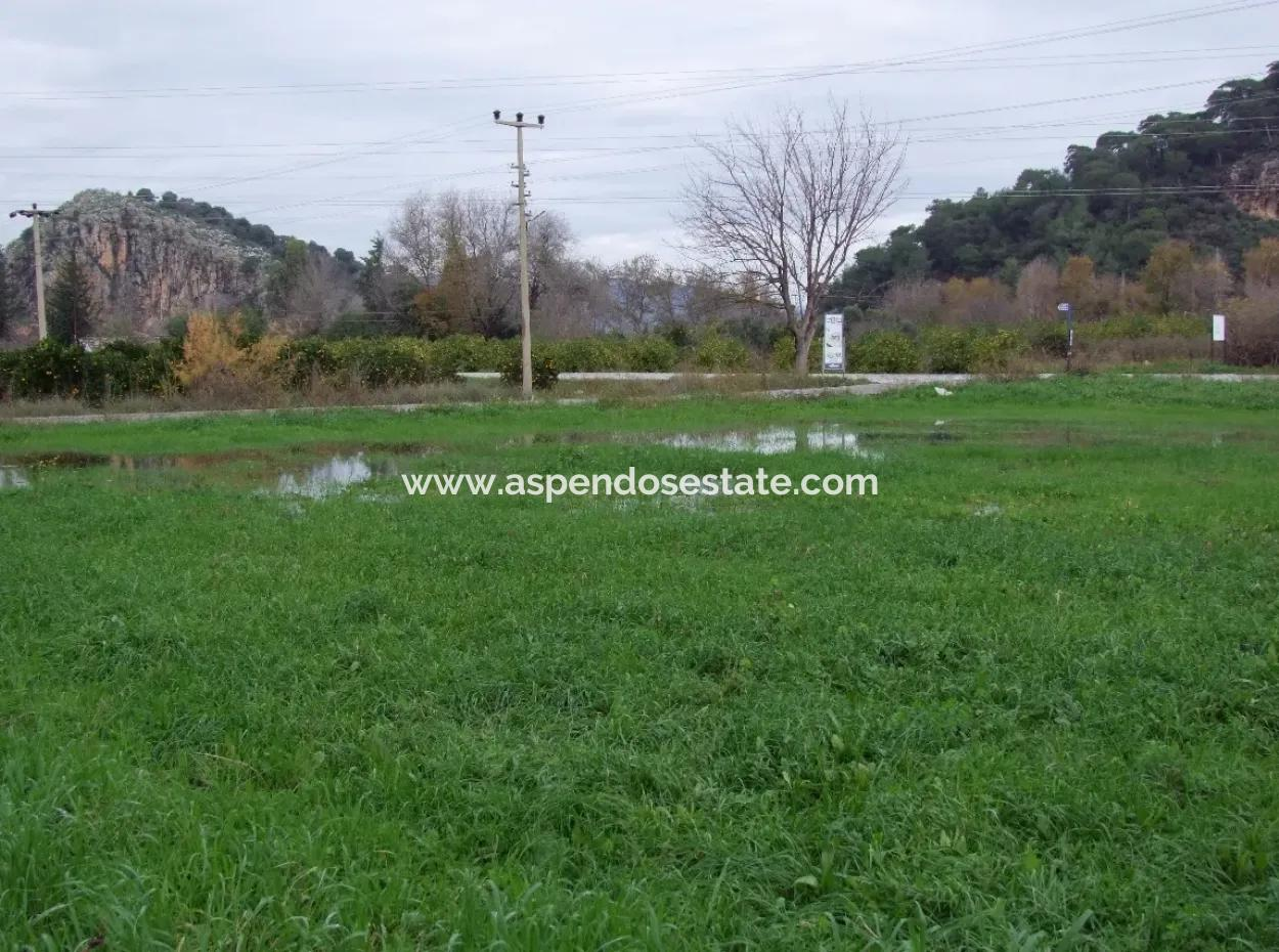 Gulpinar Dalyan Dalyan For Sale In 1002M2 Plot For Sale For Sale Cornerstone
