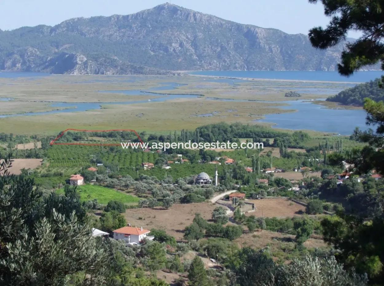 Property For Sale In Dalyan Plot For Sale With Sea Views 8767M2