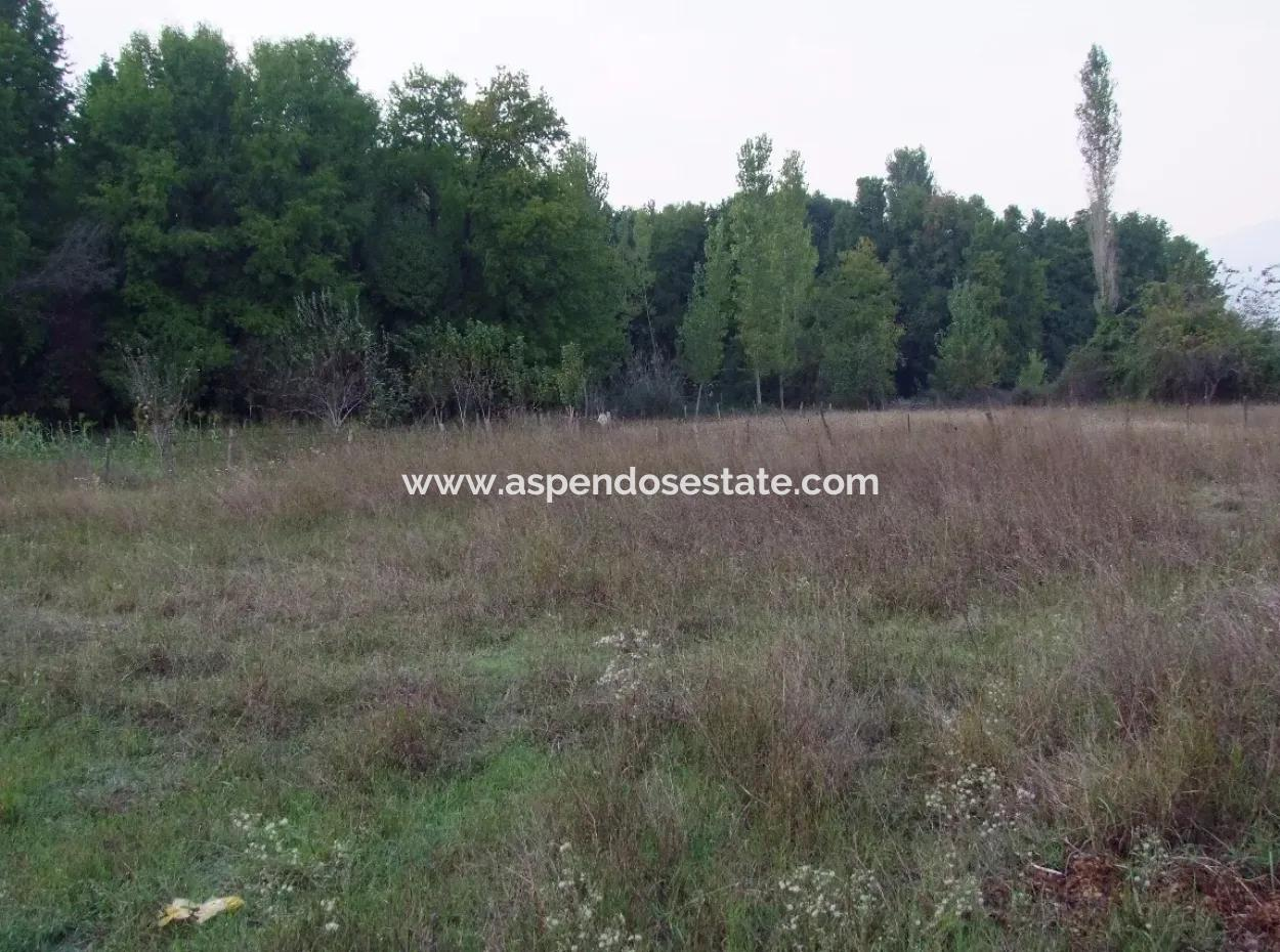 1262M2 For Sale In Koycegiz, Plot For Sale