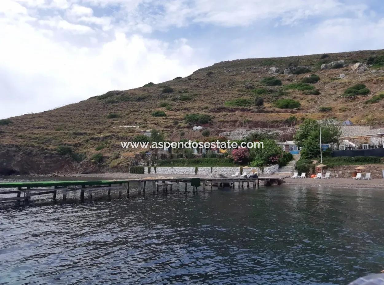 Custom Village By The Sea For Sale Villa For Sale In Osmanabad