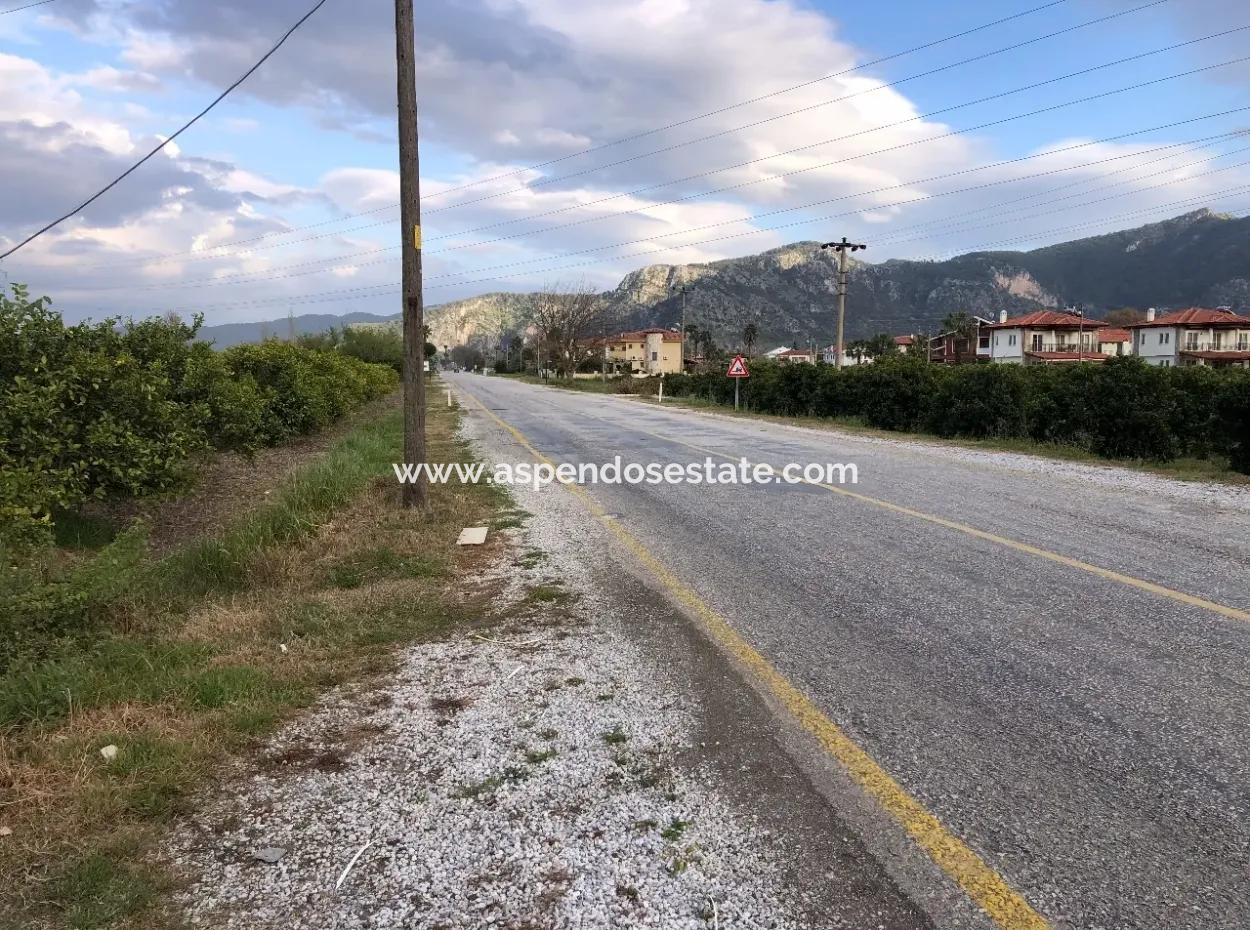 For Sale In Dalyan Plot For Sale In Highway Zero 9029M2