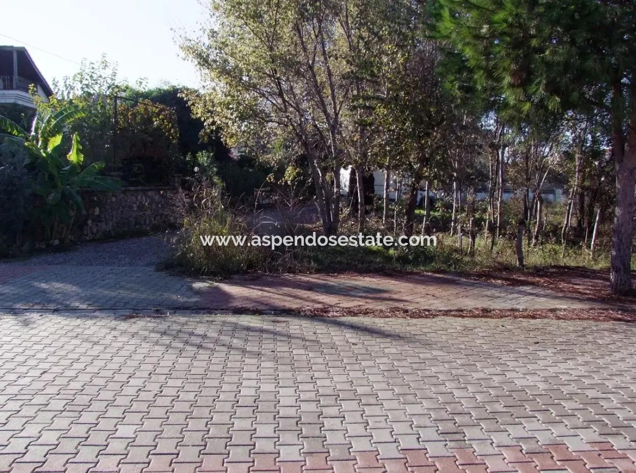 For Sale Plot For Sale Plot For Sale In Dalyan Gurpinar 1006M2 At The Corner