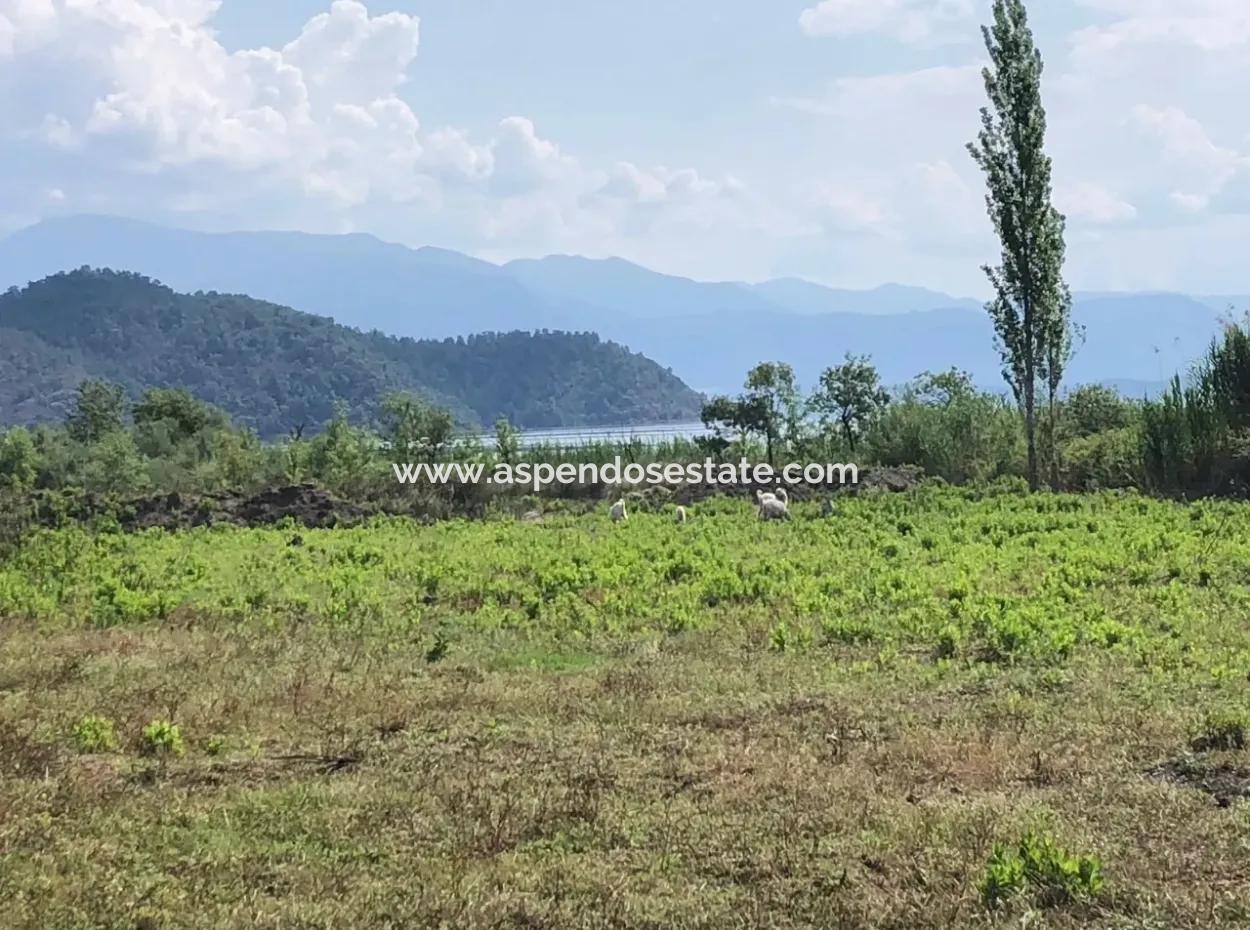 Sultaniye Sultaniye Koycegiz Lake Plot For Sale For Sale In By The Sea