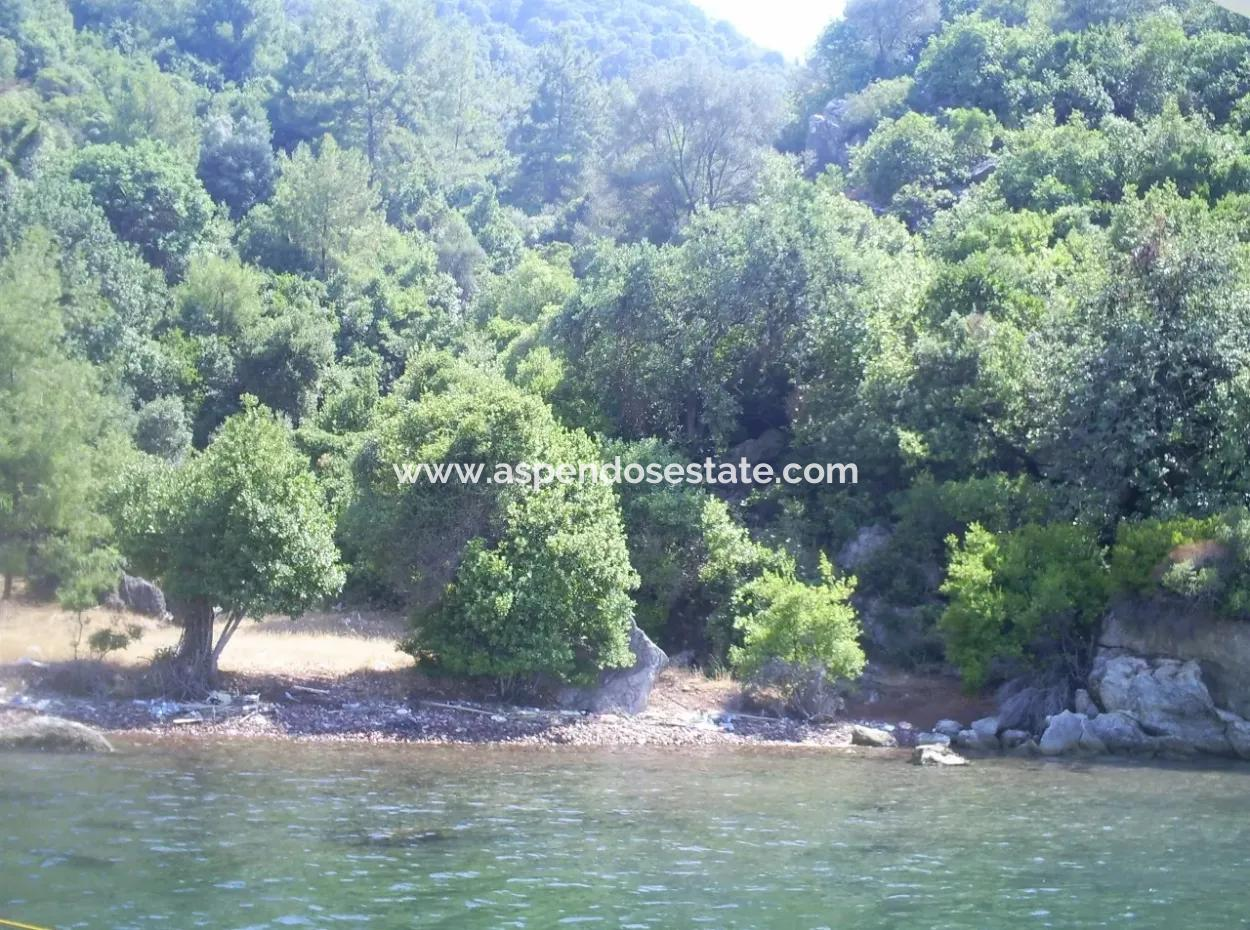 Marmaris Armutalan By The Sea In Island Village For Sale Bargain 5300M2