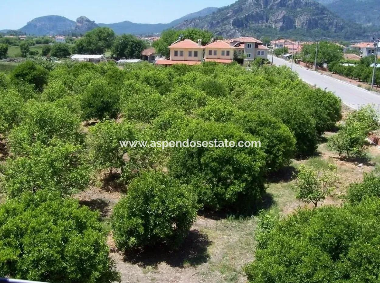 For Sale Bargain In Dalyan In Dalyan Plot For Sale Of 1000M2 Zoned 0 To 60