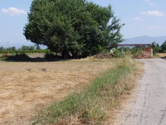 Okcular 650M2 Corner Plot For Sale In Dalyan House For Sale In Archers