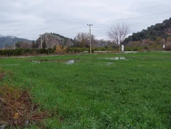 Gulpinar Dalyan Dalyan For Sale In 2,143M2 Plot For Sale For Sale Cornerstone