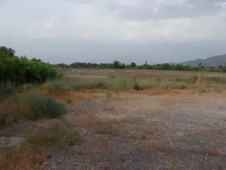 Commercial Plot For Sale In Dalyan, Dalyan On Highway 17,805M2 Plot For Sale Bargain