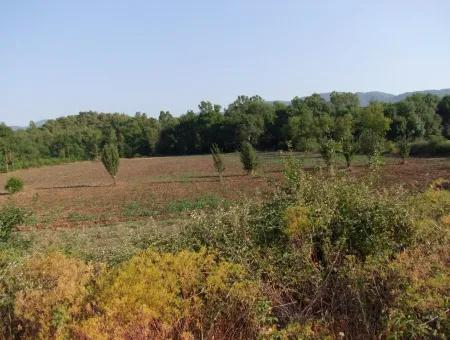 Commercial Plot For Sale In Sarayköy Kizilyaka 112668M2 From The Main Road Zero %5 Land Plot For Sale