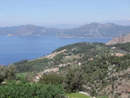 Land For Sale In Faralya With Full Sea View For Sale
