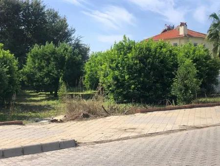 1000M2 Plot For Sale In Dalyan For Sale Dalyan