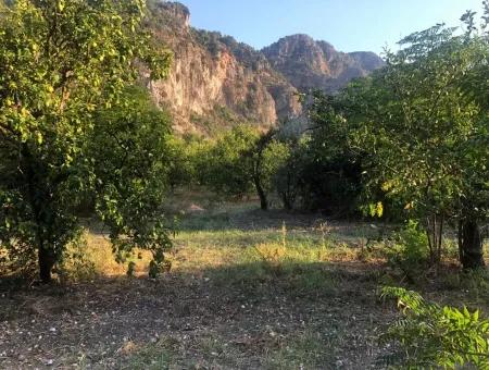 1359Spm For Sale Land In Okcular