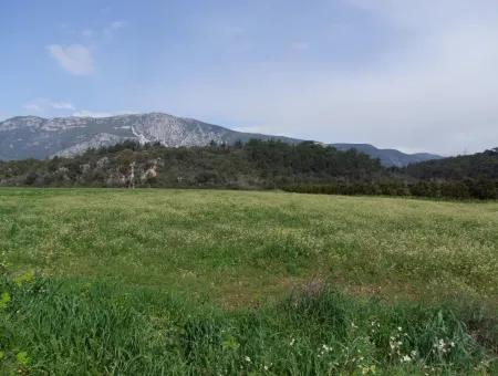 In Akyaka For Sale: Land For Sale Farm For Sale A Farm Near The Sea Of Ars, Yatirimlik 21625M2