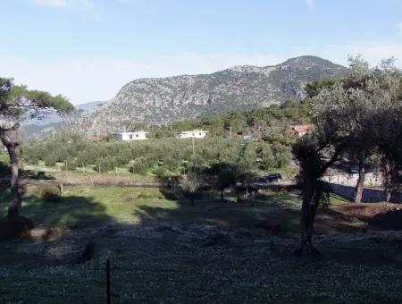 2000M2  For Sale Land For Sale In Gokbel Gokbel