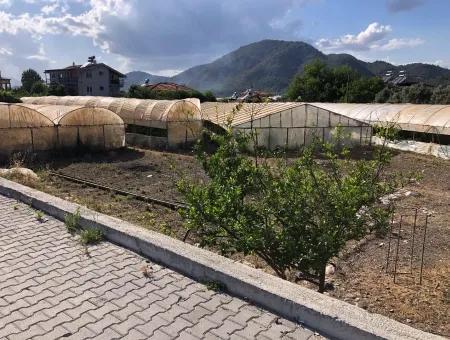 Oriya 560 560 Sq Ft Plot For Sale Commercial Land Main Road For Sale Eksiliyurt Zero
