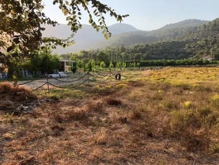 2300M2 Land For Sale Near The Center Of The Land For Sale
