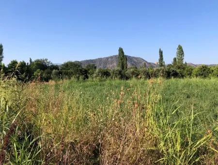 Land For Sale In The Center 891M2 Land For Sale