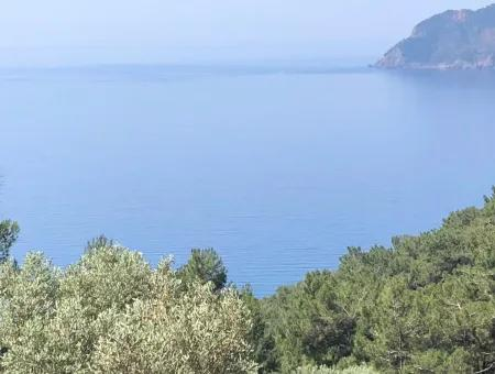Farm Land For Sale In Dalyan Field For Sale With Sea View 7034M2