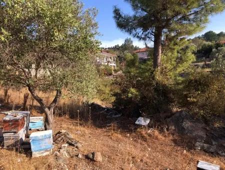 Gökbel Land For Sale 1000M2 Land For Sale With Sea Views