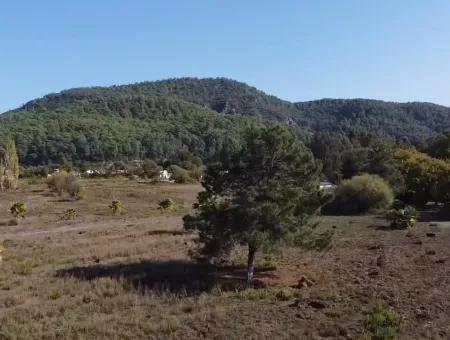 Land Land For Sale In Camli 11378M2 Land For Sale With Sea View In Marmaris Çamlıda