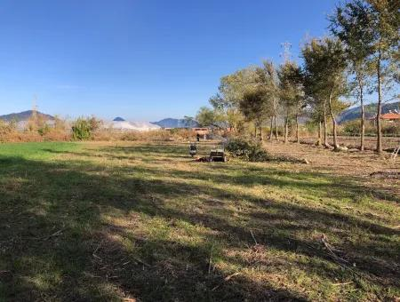 Land For Sale In Dalyan 2540M2