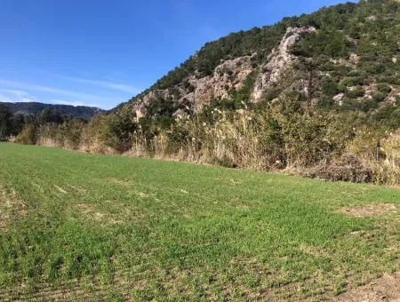 Land For Sale In Sarıgermede 30,000M2 Land For Sale With Sea View
