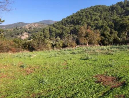 Ekincik Land For Sale 10,038M2 Land For Sale Field