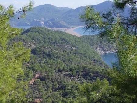 Real Estate Bargain Plot For Sale With Sea Views In Çandır Call In Ekincik