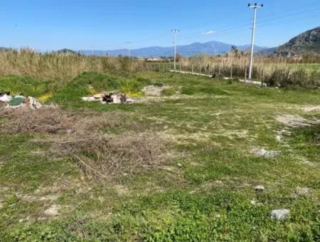 13000M2 Field For Sale In Dalyan