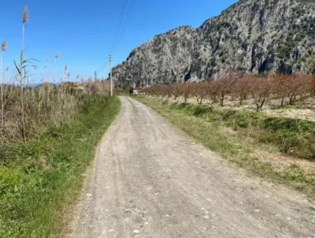 9310M2 Land For Sale In Dalyan