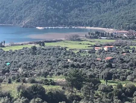 2 With Sea View For Sale In Ekincik,Ekincik Koycegiz For Sale: 535M2